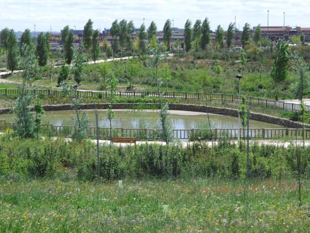 El parque de dehesa vieja crece m s de ser madrid norte - Pisos en dehesa vieja san sebastian de los reyes ...